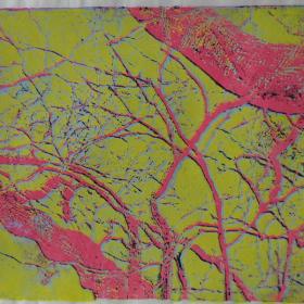 anna-van-der-horst_grafiek_2005_09