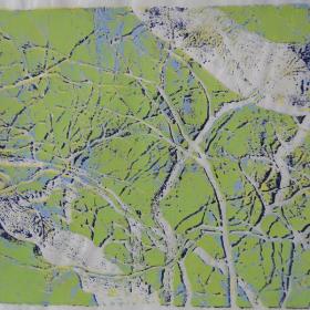 anna-van-der-horst_grafiek_2005_12