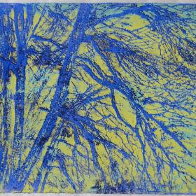 anna-van-der-horst_grafiek_2005_19