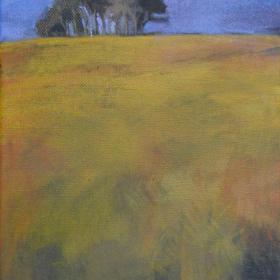 anna-van-der-horst_schilderijen_2012_12